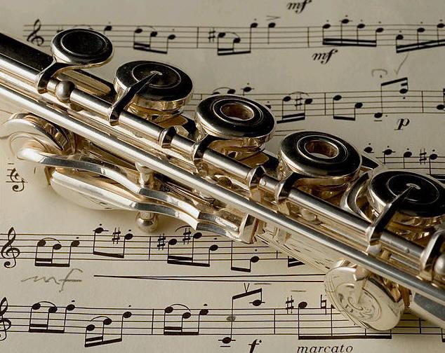 Платонов Школа Игры На Флейте